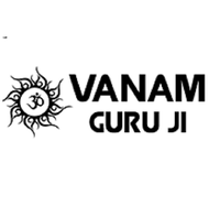 Local Business  Astrologer Vanam Guruji in Harris Park NSW