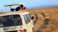 Best Camping Tours and Safaris Ltd