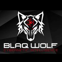 Blaq Wolf Holdings Pty Ltd