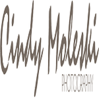 Local Business Cindy Moleski Photography in