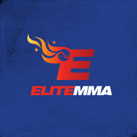 Local Business Elite MMA in Houston TX