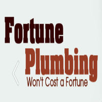 Local Business Fortune Plumbing in Gainesville GA