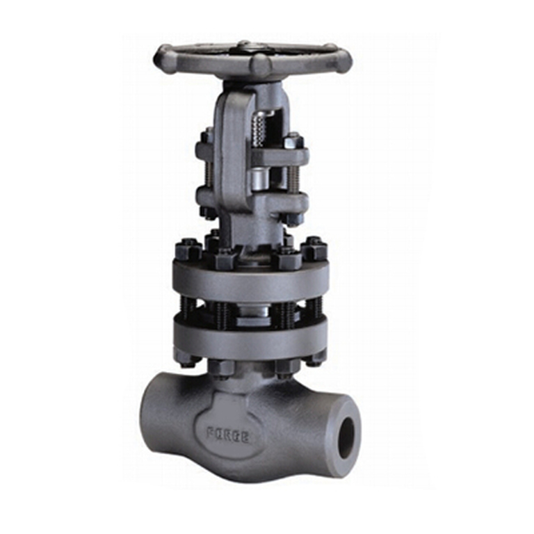 1 Inch Forged Gate Valve