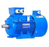 Variable Frequency Motor