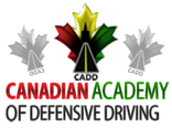 Learn Driving School Toronto caddonline