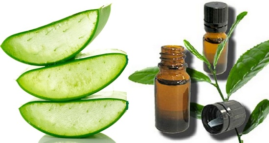 New Step By Step Roadmap For How To Use Tea Tree Oil