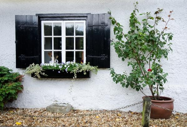 6 Tips on How to Stylishly Decorate Your Windows