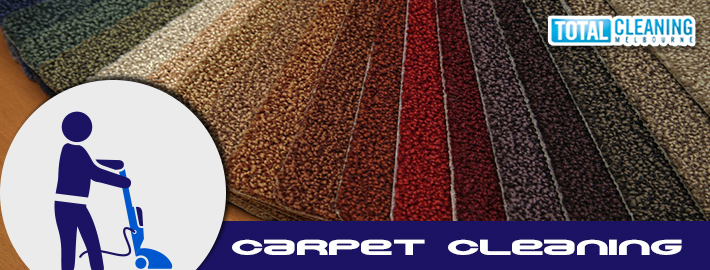 How Can You Maintain Professionally Cleaned Carpet In Your Home?