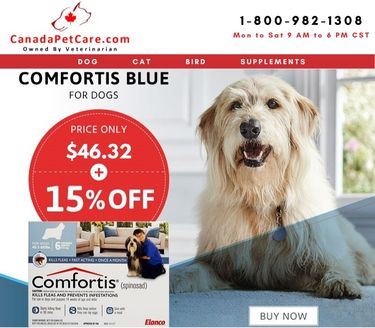 Buy Comfortis Chewable Tablets for Dogs Only $46.32 + 15% Off & Free Shipping