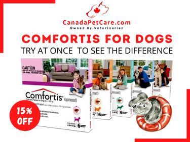 Buy Comfortis Flea Treatment for Dogs Online