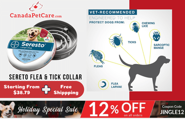 Festival Sale Offer - Biggest Price Drop on Seresto Collar for Dogs